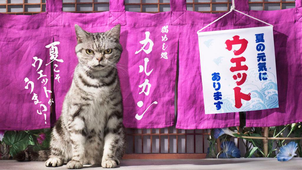 tsuji_69