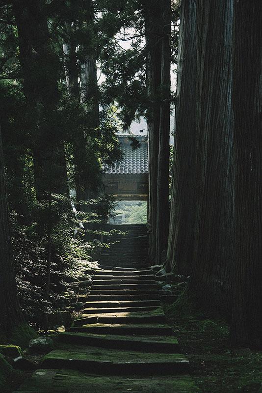 koshikawa021